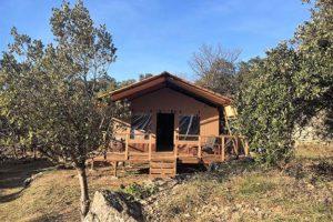 Yucca Lodge